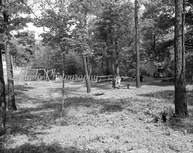 (1958) Unknown forest or playground.