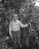 (Sept. 1955) Shown is the Corbin Scott Orchard, Trevorton Road.