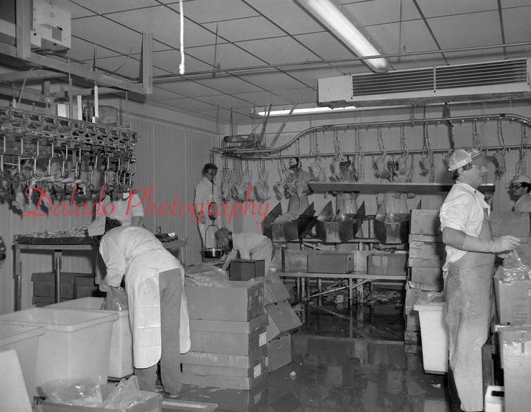 (08.16.1982) Irish Valley Processing, located at Reed's Station.