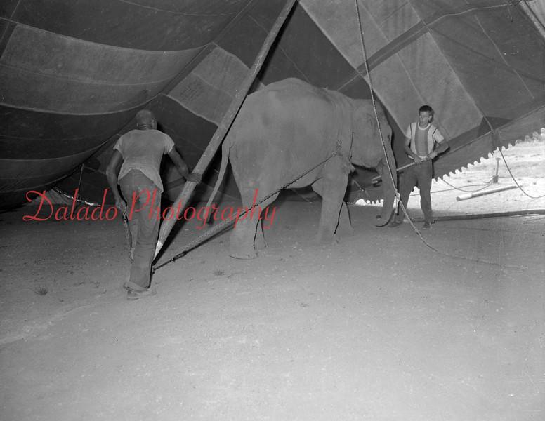 (07.14.55) Circus.