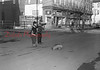 Boys with downed dog at Sixth and Spruce streets.