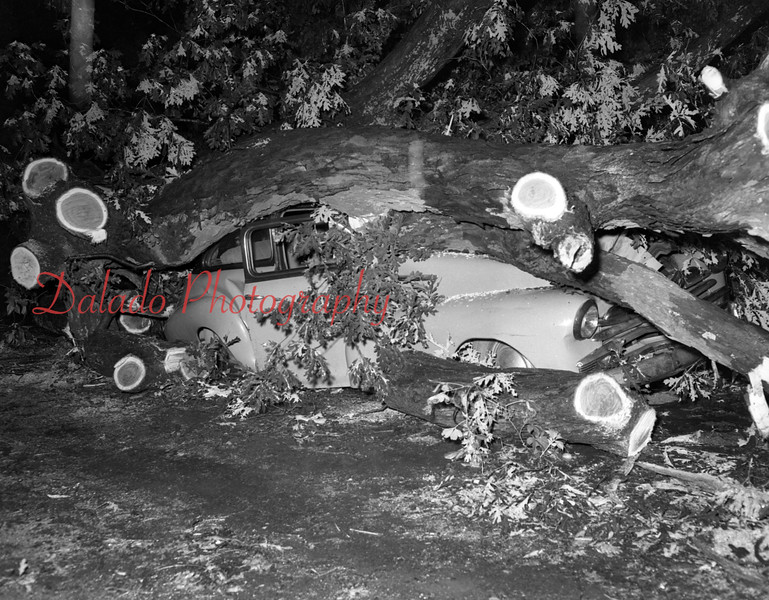 (July 1954) John Long, of Reliance, was slightly injured when a tree landed on his automobile after traveling down a 20-foot embankment.