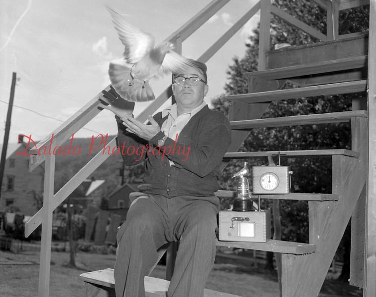 (May 1954) Pigeon man.