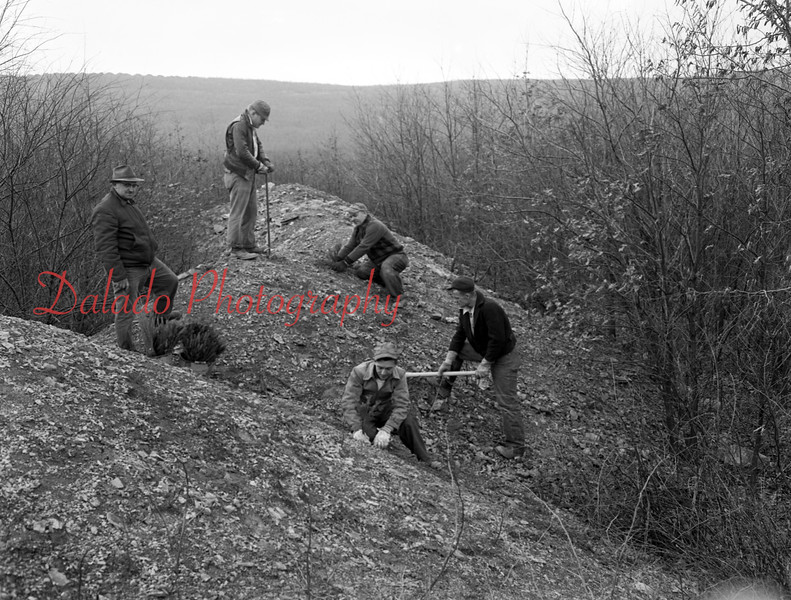 (1956) Dept. of Mines employees are shown planting three seedlings on soil banks near the Kulpmont-Locust Gap Highway. Pictured are, from left, Michael Polinka, supervisor of the project, Huber Fry, Clem Day, Frank Bergonia and Jack Howard.