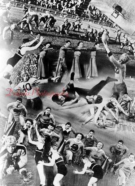 Shamokin sports composite.
