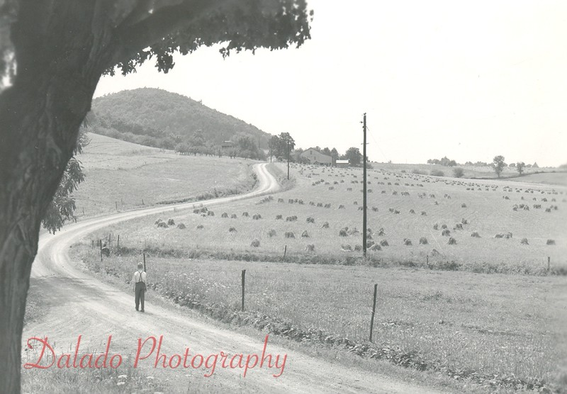 I want to say this is the back road near Indian Hills, but I have not confirmed this yet.