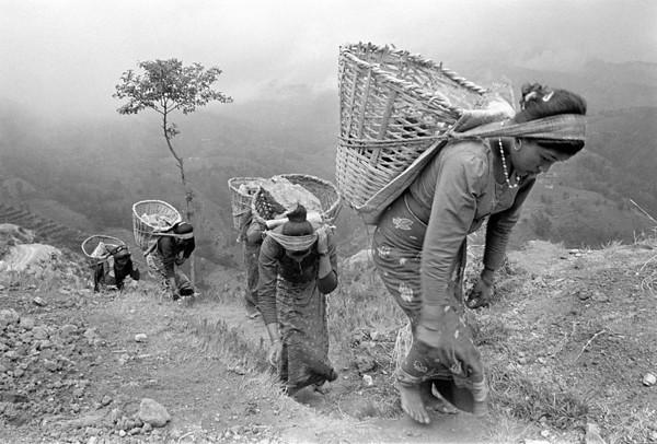 Tamang Porters. Nepal.