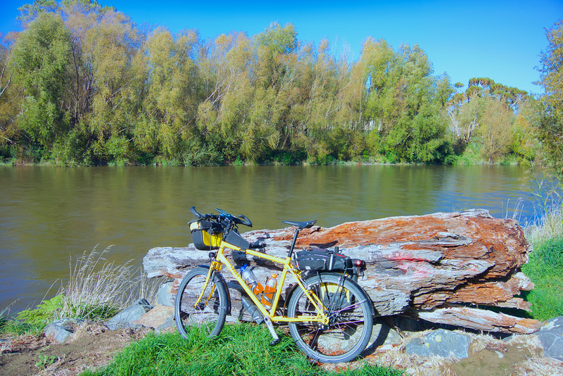 How could I go past this scene and not throw my bike up against the log and photograph it?``