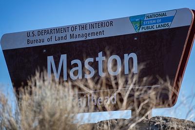 Mastondon 10ish miler, March 1, 2020