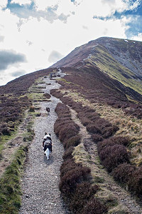 Grisedale Pike : the start of the steep ascent