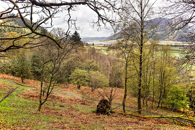 A Glimpse Of Bassenthwaite Lake From The Woods