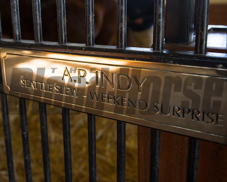 A.P. Indy