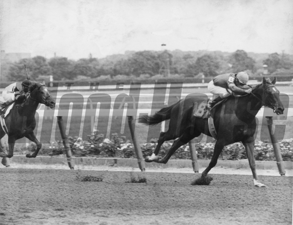 Alydar won the Great American in 1978. <br /> Photo by: Bob Coglianese.