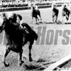 Alydar won the 1978 Whitney Handicap at Saratoga with Jorge Velasquez up. <br /> Photo by: Bob Coglianese.