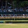 Belmont Race Sequence #5 - Chad B. Harmon