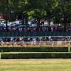 Belmont Race Sequence #6 - Chad B. Harmon