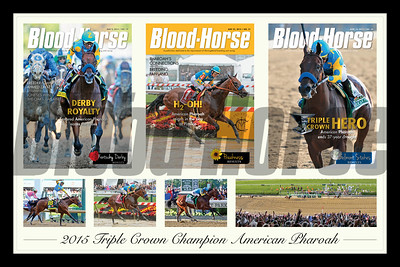 Commemorate American Pharoah's Triple Crown with this 30x20 collage of his Blood-Horse covers and photos of his finishes in the Kentucky Derby, Preakness Stakes, and Belmont Stakes.