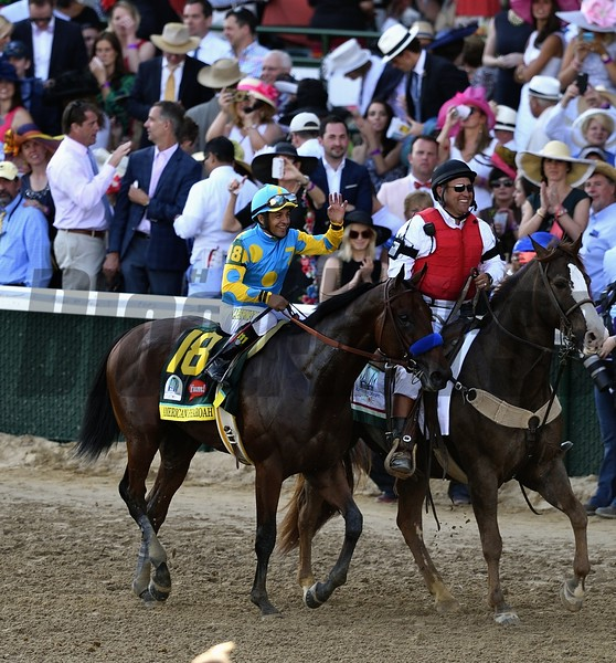 American Pharoah coming back around the track after winning the Kentucky Derby