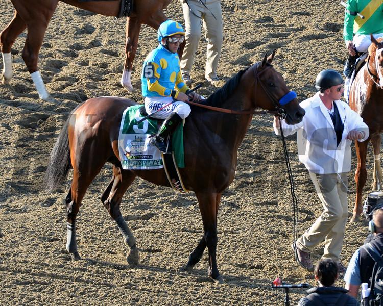 American Pharoah Belmont Stakes Chad B. Harmon