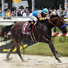 American Pharoah wins the 2015 Preakness Stakes.<br /> Dave Harmon Photo