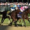 American Pharoah<br /> Kentucky Derby 141, 2015<br /> Dave Harmon Photo
