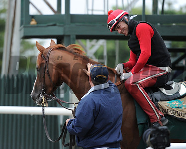 California Chrome at Belmont Park, May 28, 2014 Coglianese Photo/Lauren King