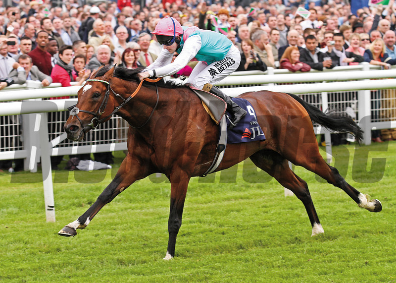 Racing fom Newbury, 19/5/12. The JLT Lockinge Stakes won by Frankel and ridden by Tom Queally.