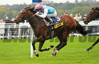 Racing from Ascot 20/10/12 Champion Stakes. Frankel (left) wins from Cirrus Des Aigles (right).