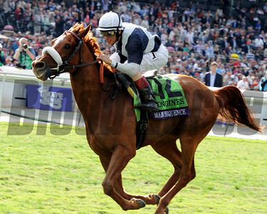 Main Sequence wins the Breeders' Cup Turf at Santa Anita. Dave Harmon Photo