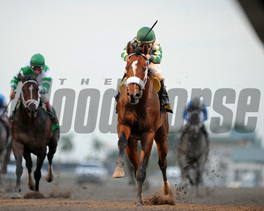 Mucho Macho Man wins the Millions Classic Coglianese Photos