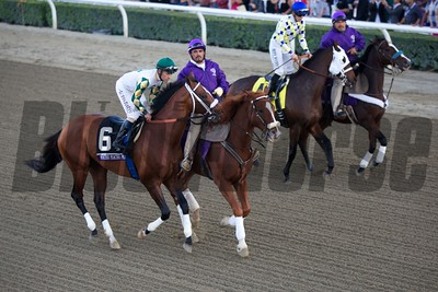 Mucho Macho Man and Gary Stevens before the Breeders' Cup Classic (G. I). Photo by Crawford Ifland.