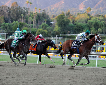Mucho Macho Man wins the Breeders' Cup Classic. Photo by Dave Harmon