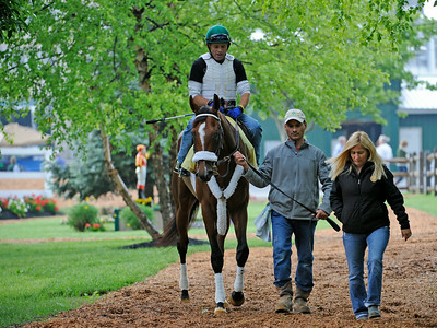 Mucho Macho Man with trainer Kathy Ritvo goes out for his morning work May 19, 2011 at Pimlico Race Course in Baltimore, MD.  Photo by Skip Dickstein