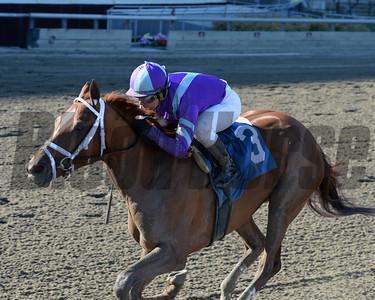Princess of Sylmar wins the Cat Cay Stakes Coglianese Photos