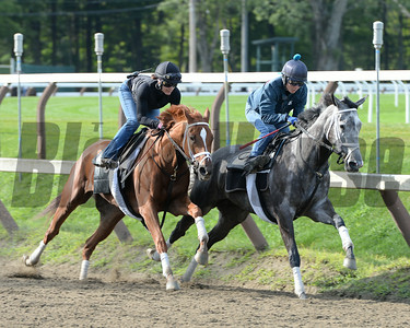Princess of Sylmar at Saratoga Coglianese Photos/Susie Raisher