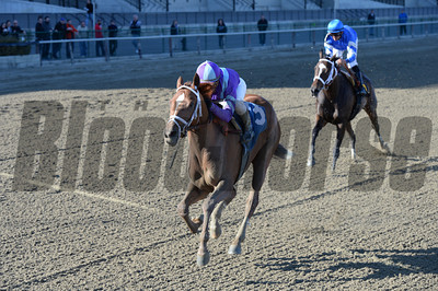 Princess of Sylmar wins the Cat Cay Stakes Coglianese Photos/Chelsea Durand