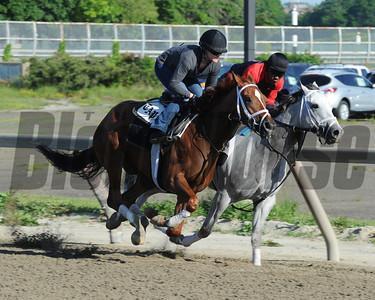 Princess of Sylmar at Belmont Park 6/1/2014 Coglianese Photos/Susie Raisher