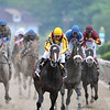 Rachel Alexandra wins the 2009 Preakness Stakes<br /> Jeffrey Snyder Photo