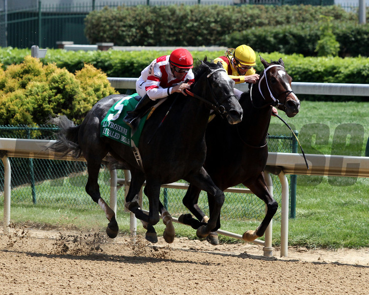 Unrivaled Belle w/Kent Desormeaux up battle with Rachel Alexandra and Calvin Borel in the La Troienne (GII) at Churchill Downs on April 30, 2010.