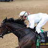 Rachel Alexandra, Calvin Borel win KY Oaks 2009, churchill downs