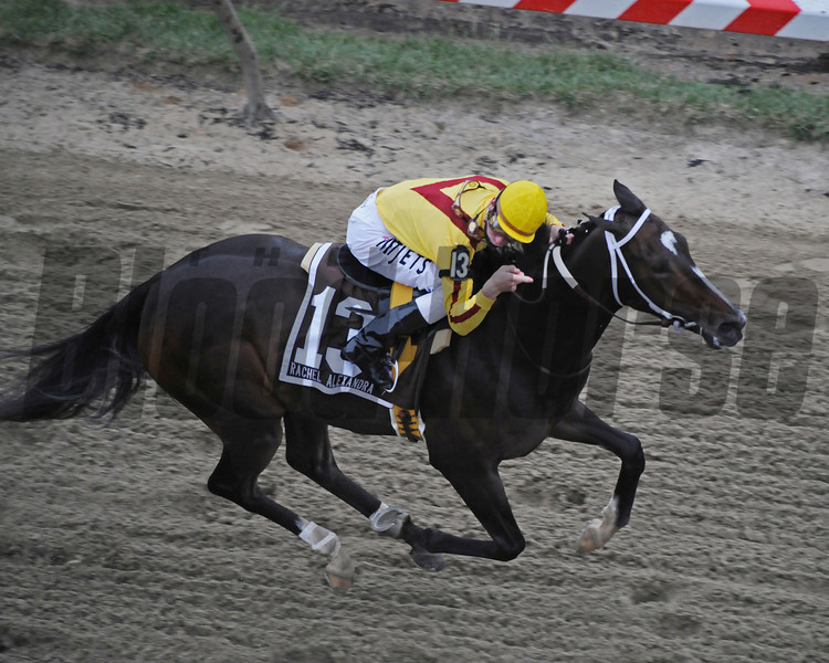 Rachel Alexander Calivin Borel win Preakness Stakes 2009, finish<br /> Photo by Mathea Kelley