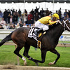 Rachel Alexandra wins the 2009 Preakness.<br /> Photo by Dave Harmon