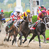 Calvin Borel and Rachel Alexandra win the 134th Preakness Stakes at Pimlico.<br /> Photo by: Jeffrey Snyder