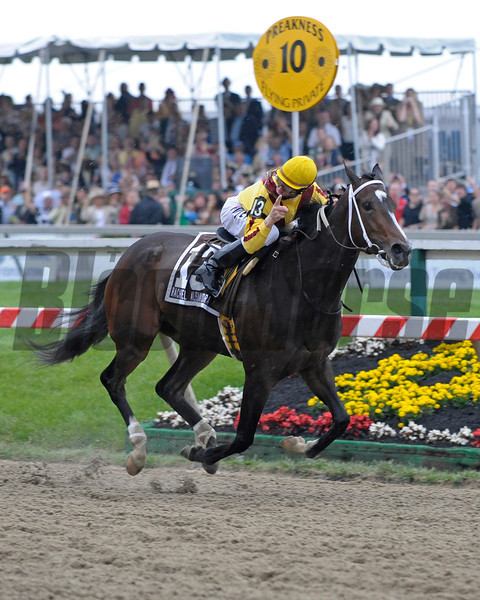 Caption: Rachel Alexandra wins the Preakness Stakes (gr. I).<br /> Preakness day at Pimlico near Baltimore, Md. on May 16, 2009.<br /> Preakness Origs 1 image673<br /> photo by Anne M. Eberhardt
