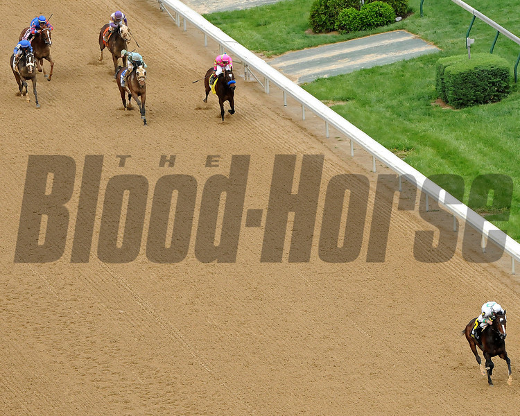 May 1, 2009: Rachel Alexandra and jockey Calvin Borel, draw off by 20 1/4 lengths to win The Gr1 Kentucky Oaks at Churchill Downs.<br /> Winning time for the 1 1/8 miles was 1:48 4/5<br /> Rick Samuels Photo