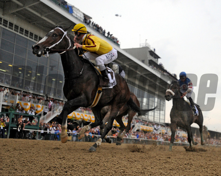 Filly Rachel Alexandra with Kentucky Derby winning jockey Calvin Borel makes a clear path to history by winning the 134th running of the Preakness Stakes and being the first filly to win the race since 1924 at the Pimlico Race track in Baltimore, Maryland May 16, 2009.<br /> Skip Dickstein Photo