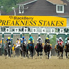 134th Preakness Stakes<br /> Jeffrey Snyder