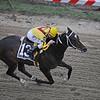 Rachel Alexander Calivin Borel win Preakness Stakes 2009, finish