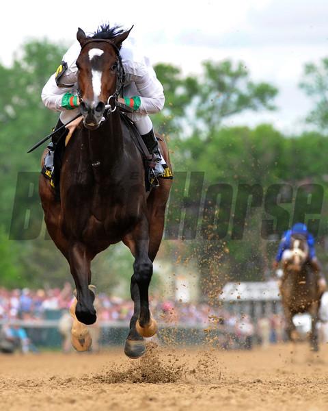Rachel Alexandra with jockey Calvin Borel wins the 135th running of the Kentucky Oaks at Churchill Downs in Louisville, Kentucky. <br /> Photo by Skip Dickstein