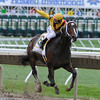 Jockey Calvin Borel aboard Rachel Alexandra shows the #1 sign as he heads to the win in the 42nd running of The Haskell Invitational at Monmouth Park in Oceanport, New Jersey August 2, 2009.<br /> Skip Dickstein Photo
